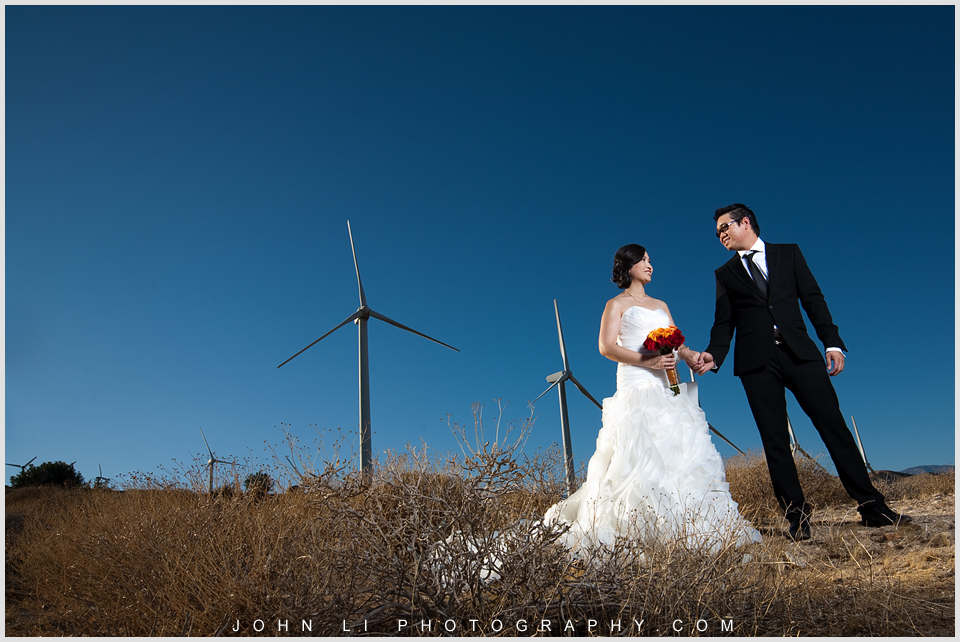 wedding photos in Joshua Tree