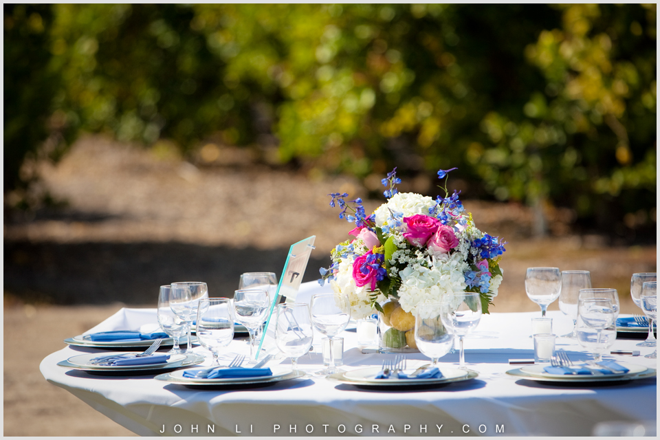 Limoneira Ranch Wedding photos center piece