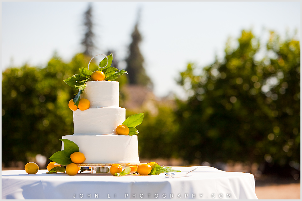 Limoneira Ranch wedding photos wedding cake