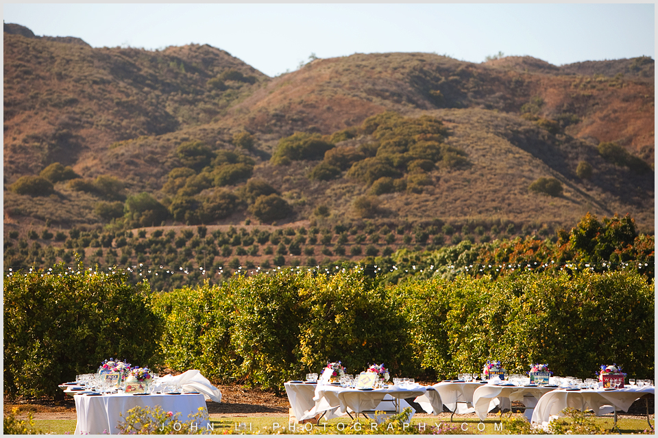 Limoneira Ranch wedding Landscape photos