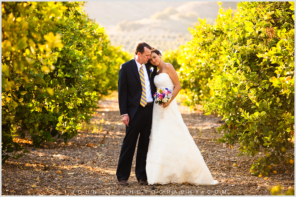 Limoneira Ranch wedding, bridal photos in Vineyard.