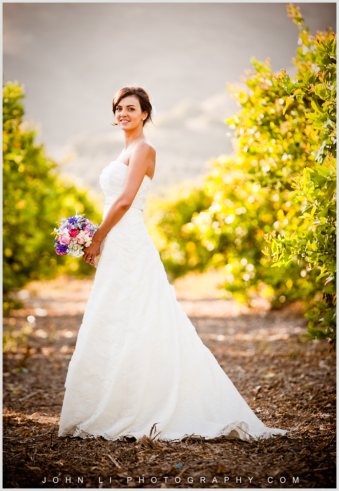 Limoneira Ranch wedding photos bride portrait