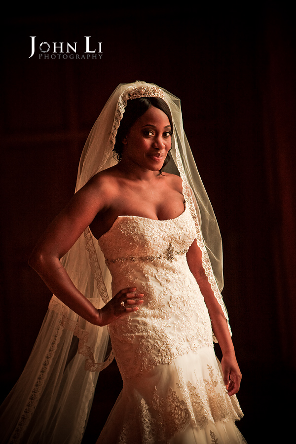 Bride Portrait in Park Plaza Hotel Los Angeles