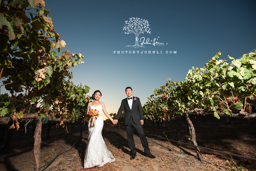 54 South Coast Winery & Resort Temecula Wedding photography