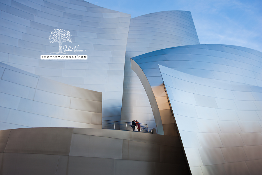 01 Walt Disney Concert Hall engagement Photography