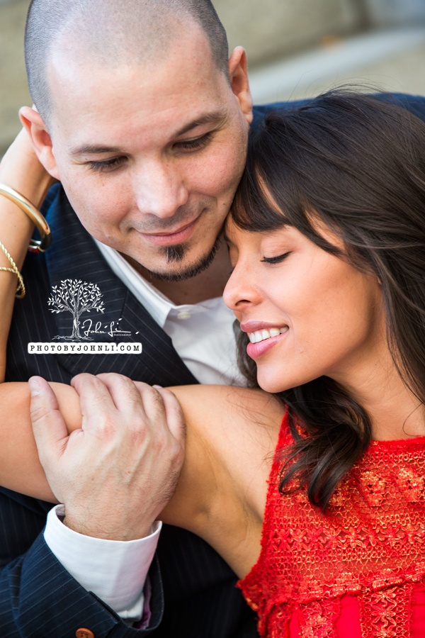 11 Walt Disney Concert Hall engagement Photography