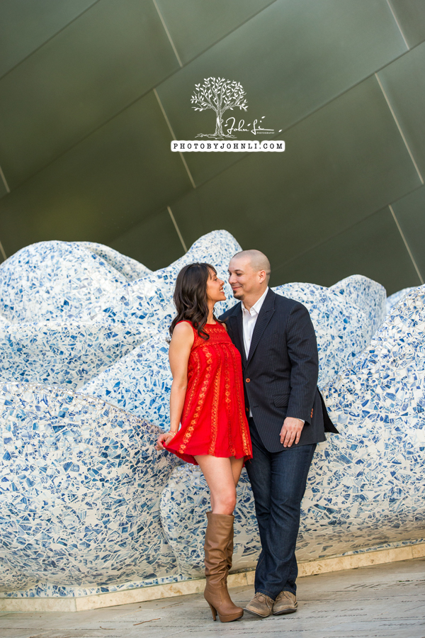 14 Walt Disney Concert Hall engagement Photography